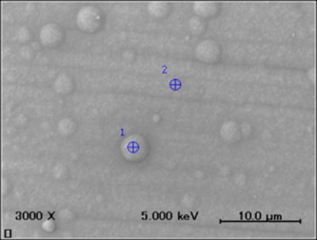 SEMによる銀メッキ表面